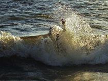 untergetaucht und abgetaucht in einer Welle von assy