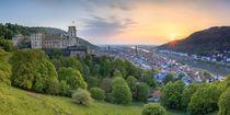 Heidelberg von Christine Büchler
