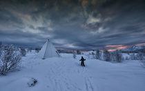Winter kid in a winter wonderland von Stein Liland