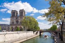 'Kathedrale Notre-Dame de Paris' von Ralph Patzel