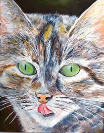 Katzenporträt von Elisabeth Maier