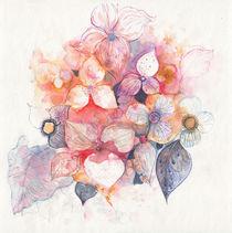 rosadas by aerostato