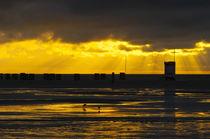 Goldene Lichtstimmung von AD DESIGN Photo + PhotoArt