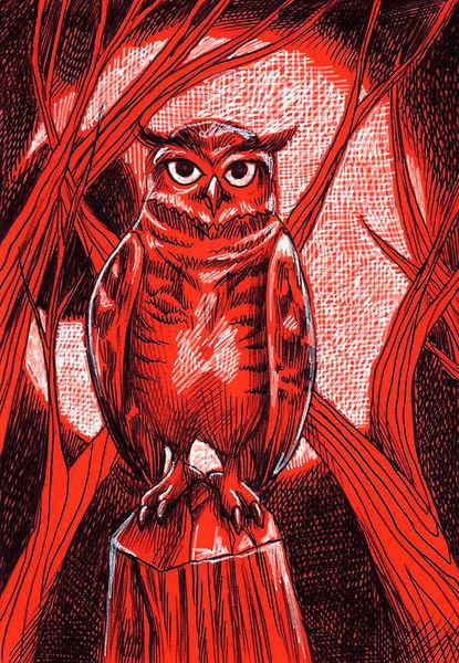 Owl2017