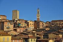 Alstadt von Siena von Peter Bergmann