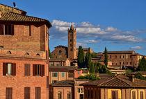 Altstadt von Siena mit Blick auf die Basilica dei Servi  von Peter Bergmann