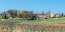 Schloss Westerhaus (7) by Erhard Hess