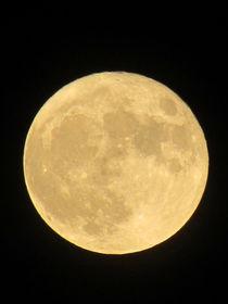 Super Moon by susanbecruising