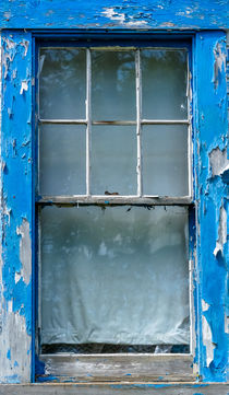 Window 1 by Tim Seward