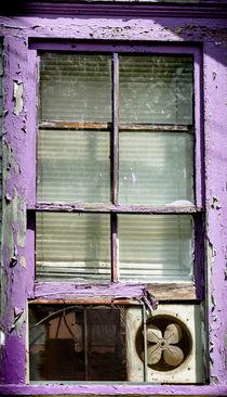 Window 2 by Tim Seward