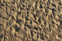 Lichtspiel im Sand by Verena Geyer