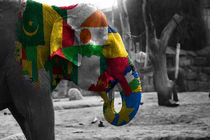 Elephant, africa flag by hottehue