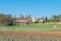 Schloss Westerhaus 36 von Erhard Hess