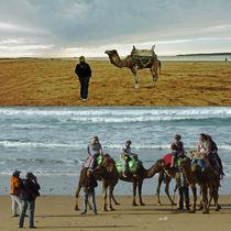 Im Mittelpunkt -- das Kamel! von Hartmut Binder