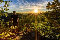 Sonnenuntergang hinter Trifels von Christian Braun
