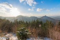 Trifels im Winter by Christian Braun
