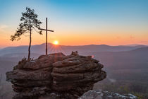 Sonnenaufgang im Pfälzer Wald by Christian Braun