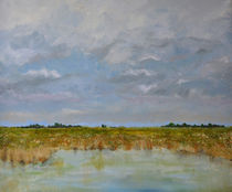 Marsh on Camargue by Philip Shone