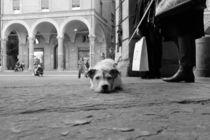 Sigh! by Azzurra Di Pietro