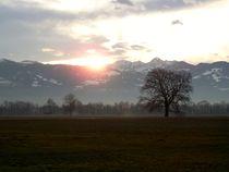 Morgensonne by art-dellas