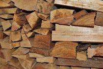 Brennholz von art-dellas
