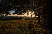 Sonnenuntergang im Sauerland von Simone Rein