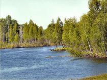 Ein Fluss von Walter Root