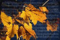 Notenblatt- Herbstmelodie von Chris Berger