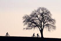Zu dritt unterwegs by Bruno Schmidiger