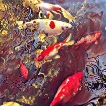 Let's not be Koi by Gail Salituri