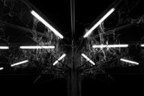 Spider lamp III von joespics