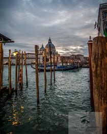 After the rain in Venice von dayle ann  clavin