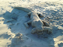 Sand art alligator holding human arm. by Blake Robson