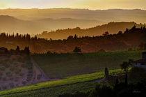 Abendlicht in den Hügeln bei Panzano in Chianti, Toskana, Italien von Klaus Rünagel