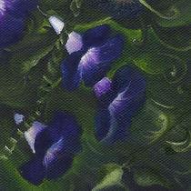Bean Flowers. Original Oil Painting. Wild Flowers by mikart