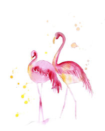 Flamingos by mikart