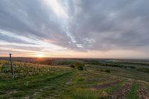 Sonnenaufgang in der Pfalz by Christian Braun