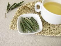Tee aus Olivenblättern by Heike Rau