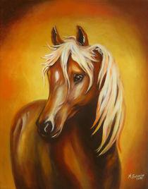 Pferdebild Fantasiepferd von Marita Zacharias