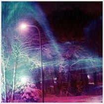 Winternächte von Daniel Klein