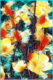 Hahnenfuß Wiesenblumen by Sandra  Vollmann