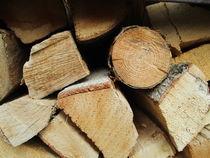 Holz von Tanja Wende
