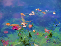 Fall leaves on river 1 by lanjee chee