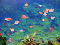Fall leaves on river 2 by lanjee chee