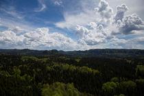Landschaft im Elbsandsteingebirge by aseifert