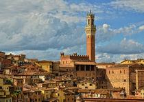 Blick auf Siena von Peter Bergmann