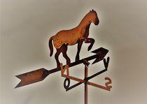 Windrichtungsanzeiger mit Pferd by assy