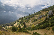 Alpine Path by h3bo3