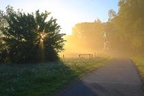 'Licht und Schatten am Morgen' von Bernhard Kaiser