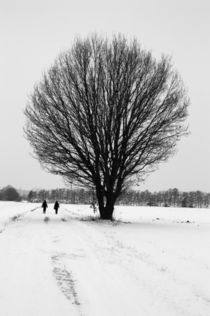 Winterlandschaft by frakn